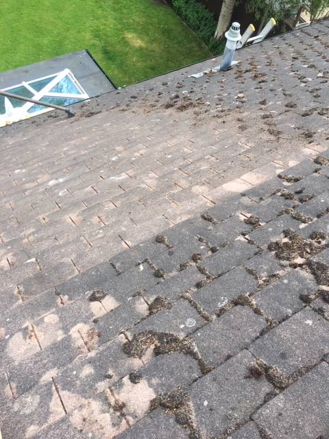 Tiled Roof Repairs Howellrs Roofing Services